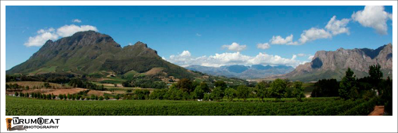 cape-winelands-day-tours