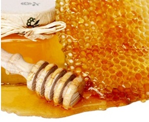 http://www.delicato.co.za/images/Plant%20Photos/Honey.jpg